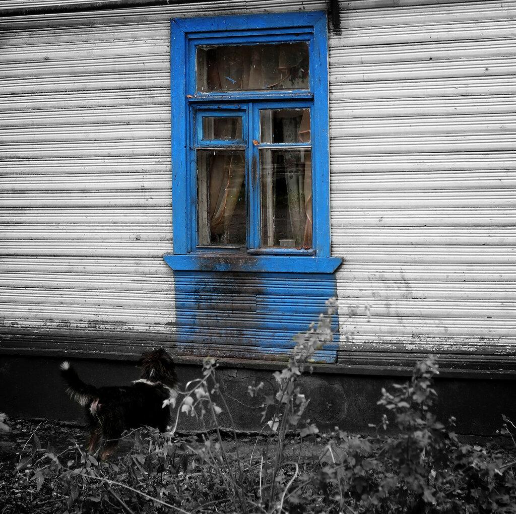 https://img-fotki.yandex.ru/get/877700/159434827.62/0_18f8ee_1802fe71_XXL.jpg