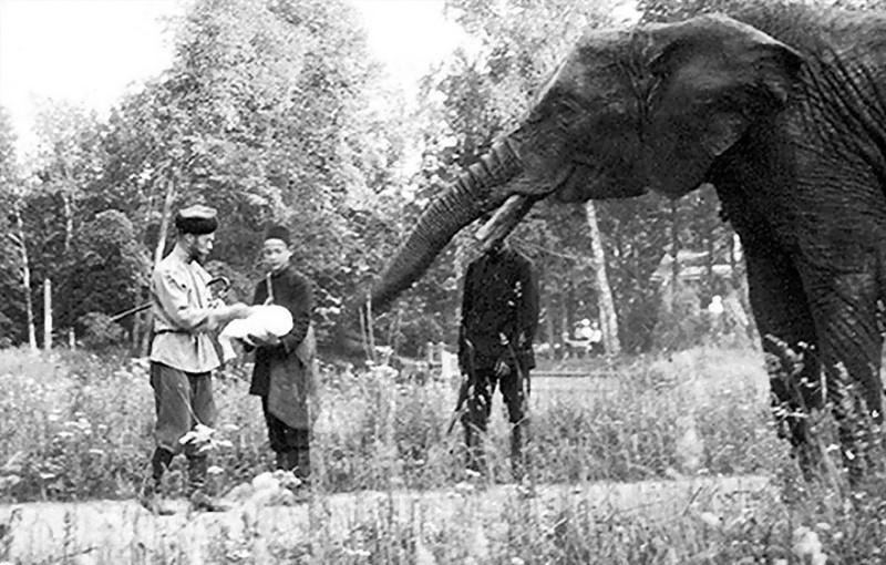 3. Семья прибыла в Тобольск 19 августа и начала жить в относительном комфорте на берегах реки Иртыш.