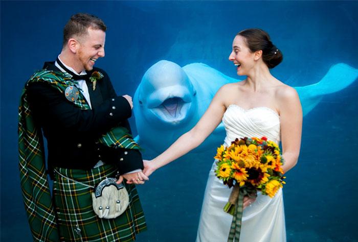 Как дети, животные и гости портят свадебные фотографии