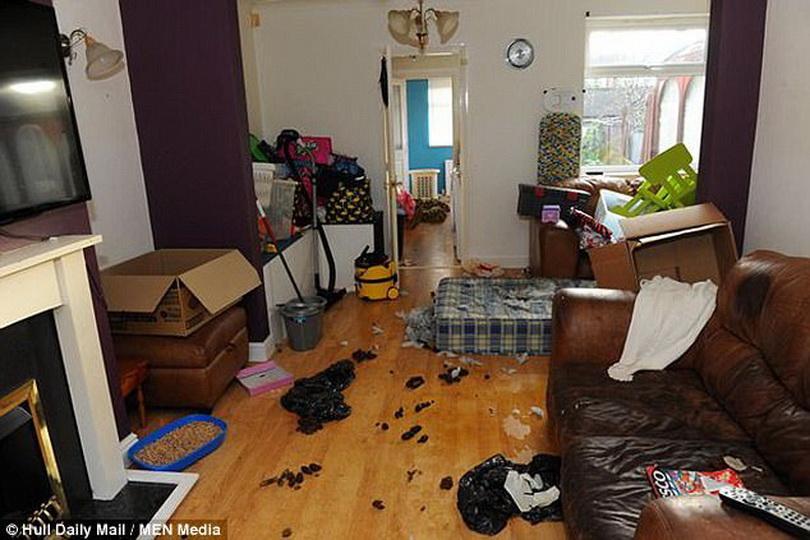 Пара с детьми исчезла из арендованного жилья, оставив в доме мусор, грязь и собаку (5 фото)