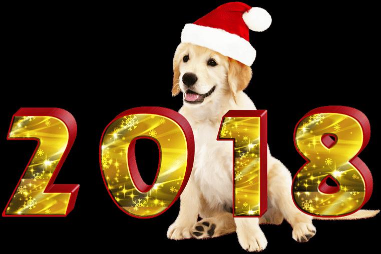 Новый 2018 год: Символ года Желтая Земляная Собака - Цвет