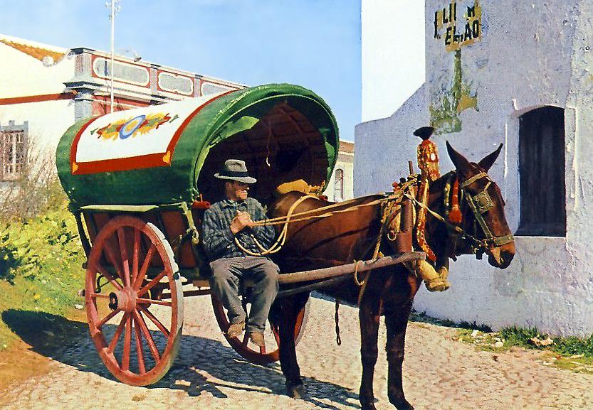 Albufeira - Carro Típico.jpg