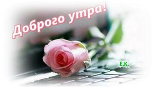 https://img-fotki.yandex.ru/get/877959/131884990.f1/0_160b6c_fcb4d120_M.jpg