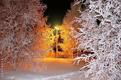 Зима!538.jpg