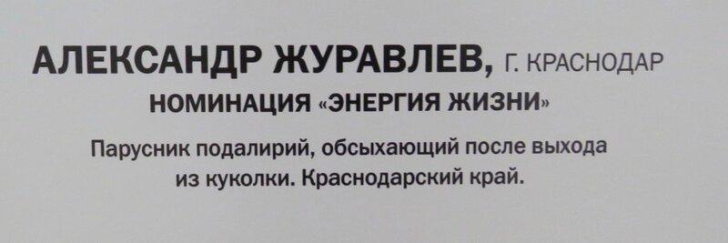 https://img-fotki.yandex.ru/get/877959/140132613.6a4/0_240953_bc8eab0c_XL.jpg