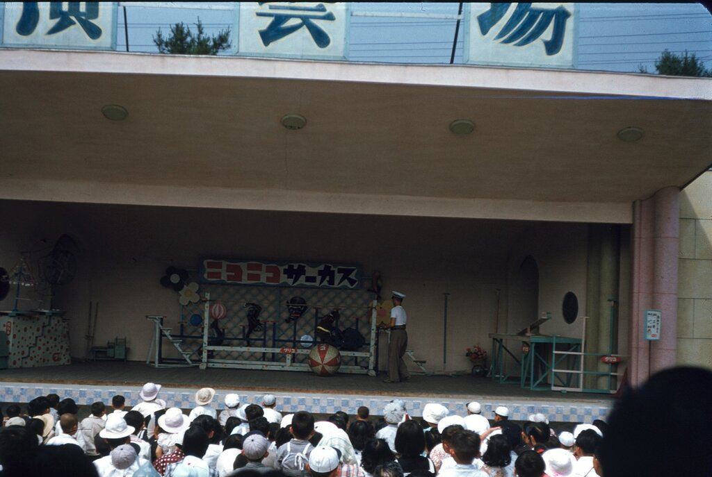 Monkey riding ball at Nagoya Zoo, June 1952.