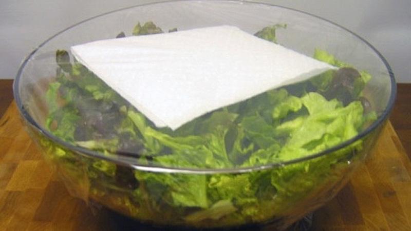 18. Эта хитрость с бумажным полотенцем поможет вашему салату-латуку оставаться свежим всю неделю. По