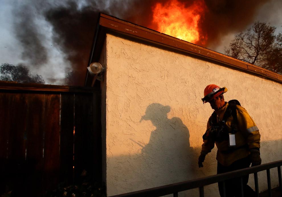 17. Лесные пожары в округе Вентура, Калифорния, 5 декабря 2017. (Фото John Cetrino):