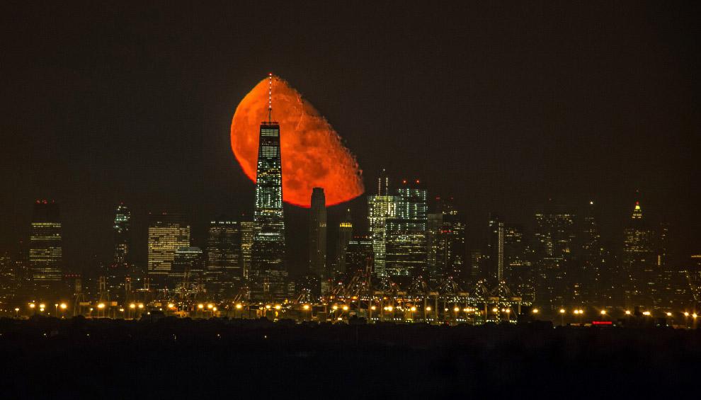 15. Кровавая Луна над Манхеттеном. (Фото Jennifer Khordi):