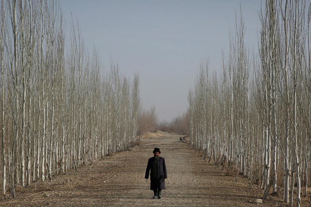 4. Город Кашгар расположен там, где сходятся отроги Тянь-Шаня и Куньлуня, у подножия Памирских гор.