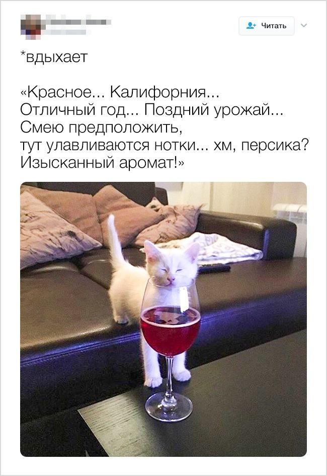 © MrFilmkritik/twitter      2.