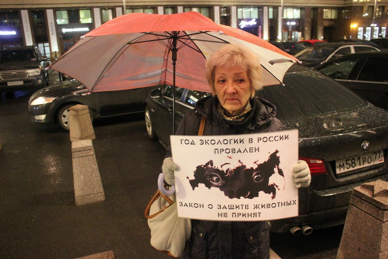 Голодовка зоозащитников возле Госдумы: 10-й день