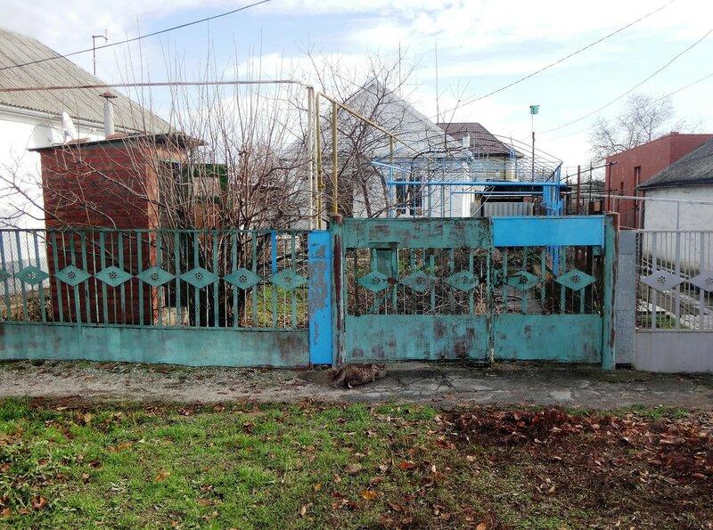 Первое декабря... В городе на Азовском побережье (50-01).JPG