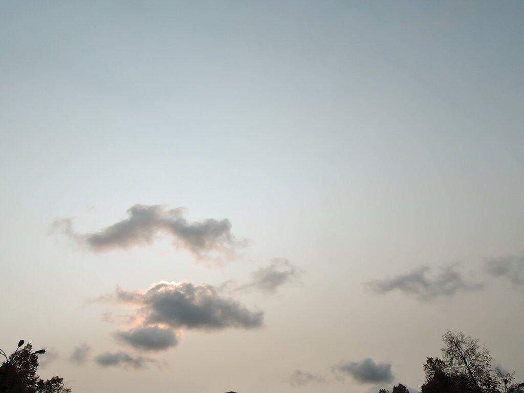 Сокольники. Небо.
