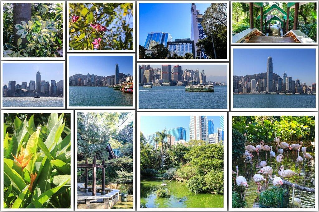 Парк Коулунь и Гонконг.jpeg