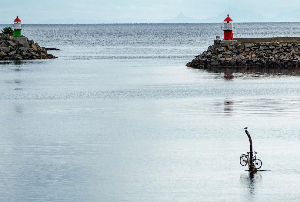 17. Интересный факт: при езде на велосипеде со скоростью 30 км/ч сжигается 15 ккал/км (килокалорий н