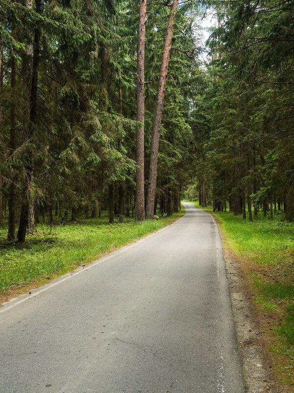 Через парк проходят комфортные велодорожки.