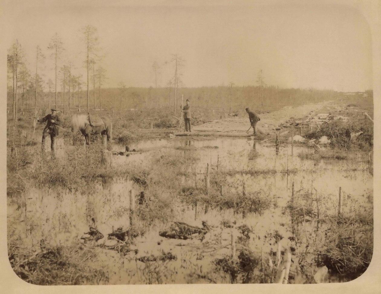 Начало строительных работ, прокладка и устройство временной дороги через болота. 1894