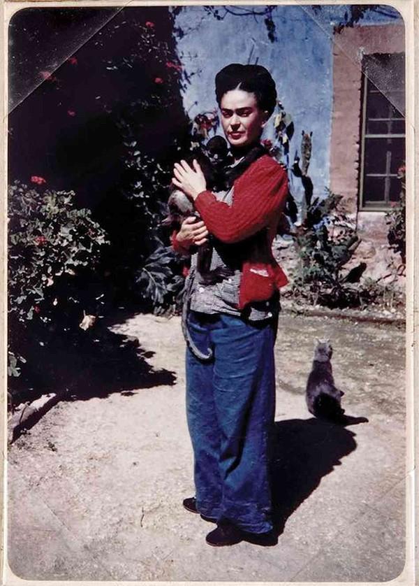 14. А вот кот Фриды Кало очень ревновал художницу к обезьянке.
