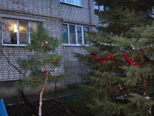 Мотив Новогоднего праздника (19).JPG