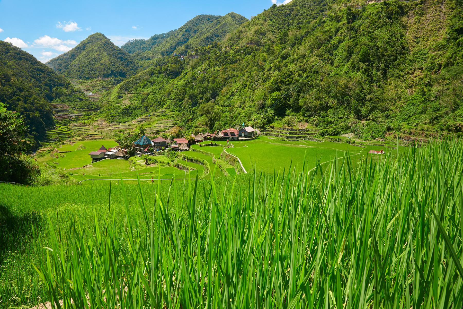 Деревня без дорог и тысячелетние рисовые террасы -