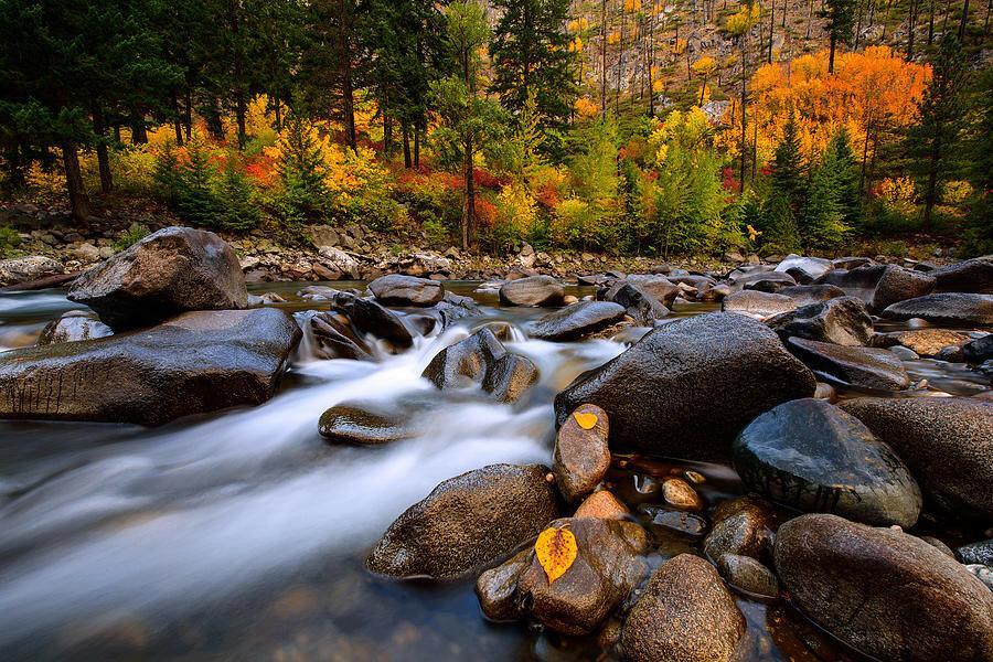autumn-rush-dan-mihai.jpg