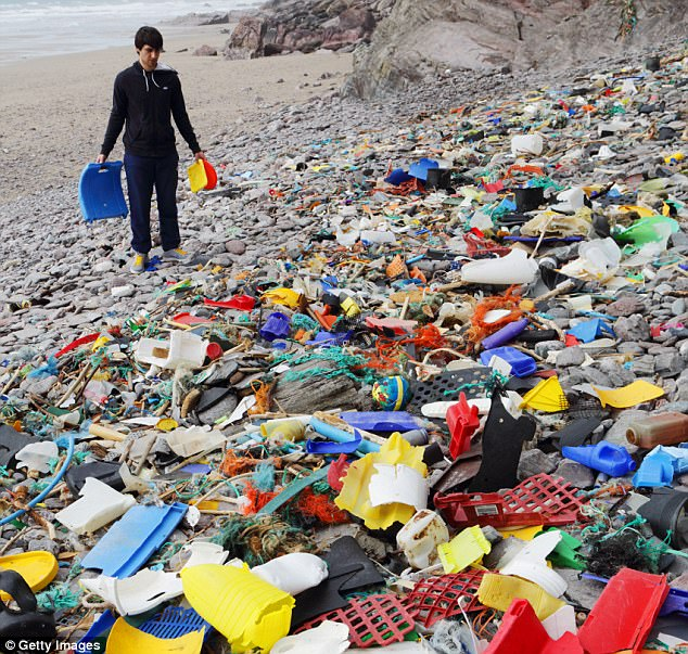 Сегодня в воды океана круглые сутки ежеминутно (!) сбрасывается один полный грузовик пластикового му