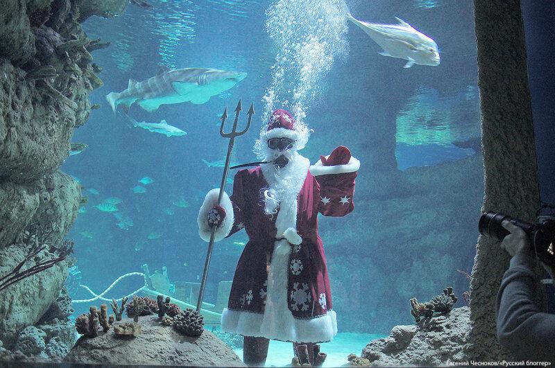 ВДНХ. Москвариум. Дед Мороз. 13.12.17.05св..jpg
