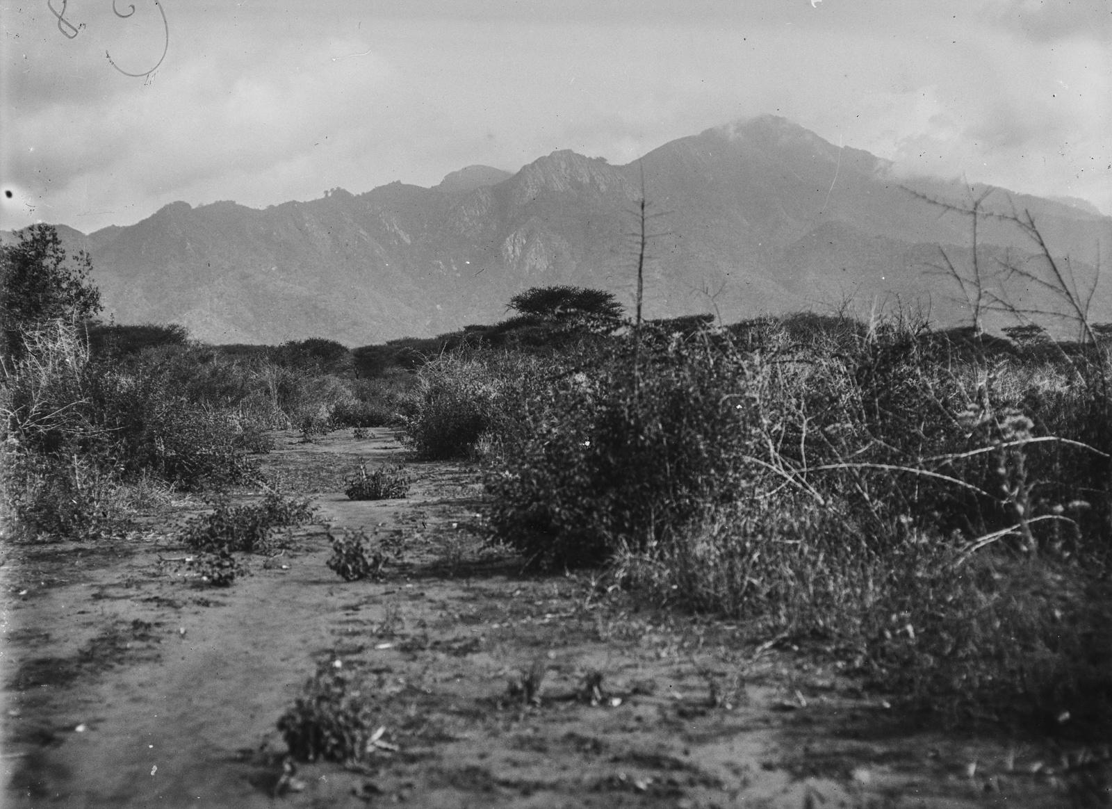 261. Сельская местность в районе гор Паре