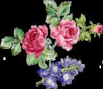Beautiful Roses #7 (20).png
