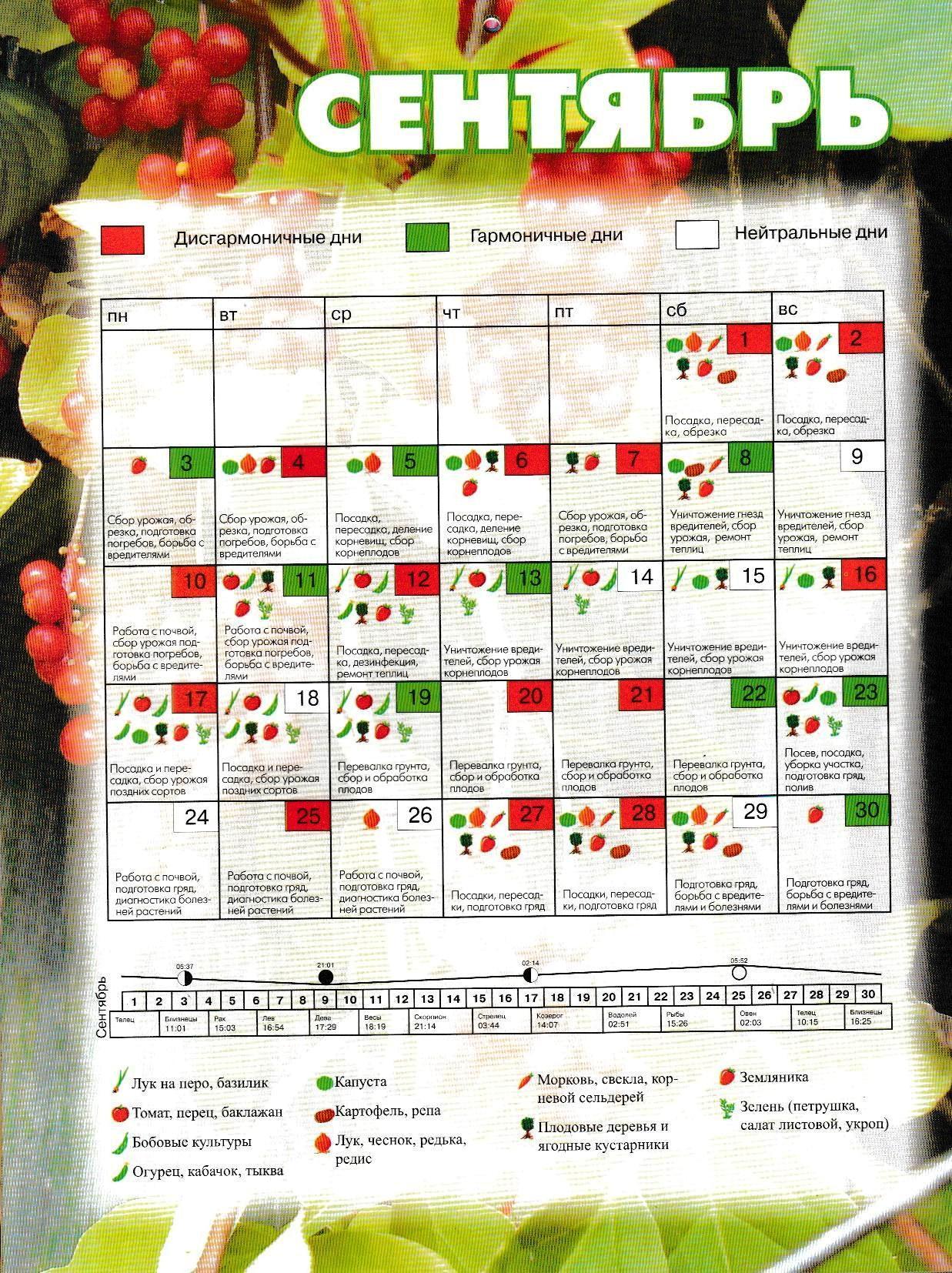 лунный календарь на октябрь фото