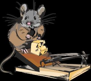 мышата