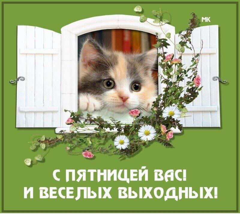 Праздником, открытка с пятницей вас друзья