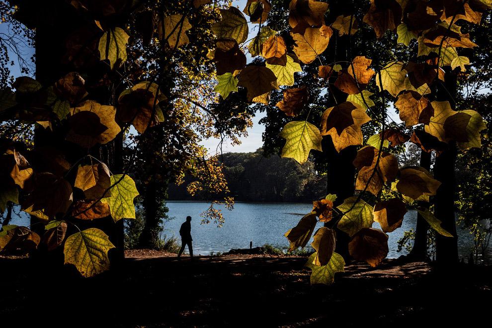 3. А это осенний пейзаж из Колорадо, 2 октября 2017. (Фото Larry Lamsa):