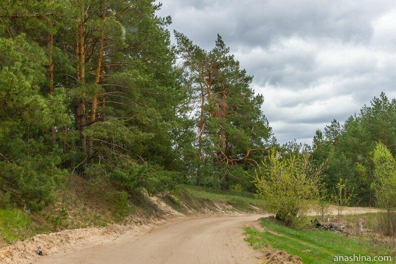Дорога к Шуховской башне на Оке, Нижегородская область