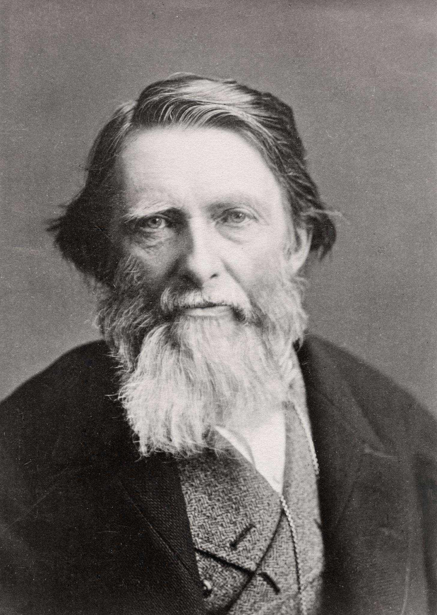 1882. Джон Рёскин, писатель