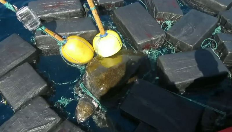Turtle with 800 kg of cocaine worth more than $ 53 million caught the US Coast Guard