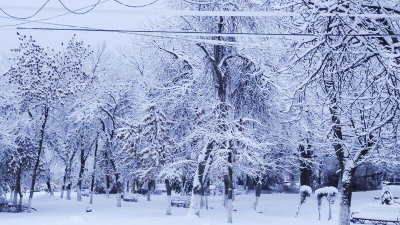 Фотозарисовка о первом снеге в Вольске 5-6 декабря 2017 г.