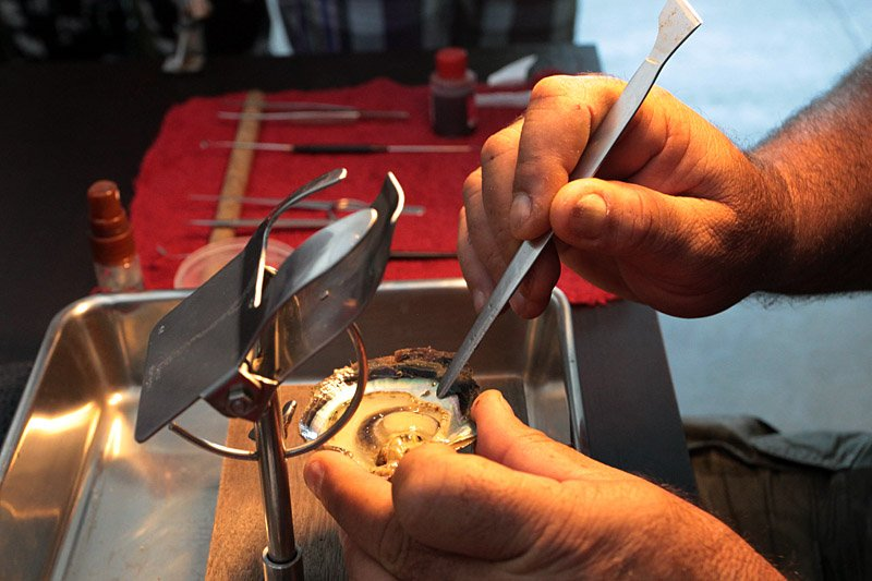 От нее отрезают кусочек мантии, который помещают потом на имплант. Он будет катализатором процесса.