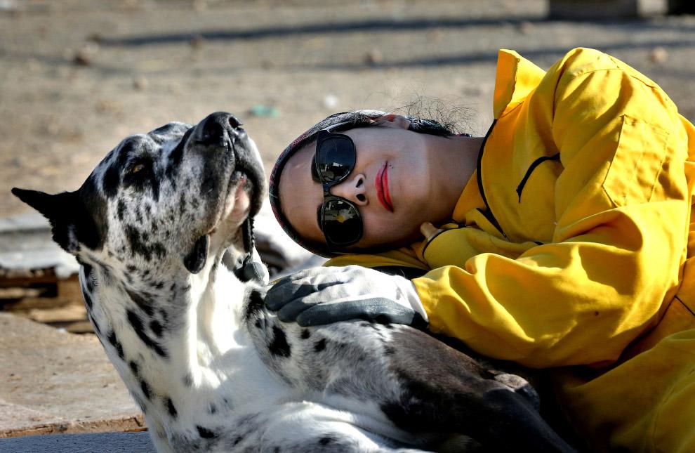 11. Детские игры. Мать и ее котенок-леопард играют в Национальном парке Крюгера в Южной Африке. (Фот