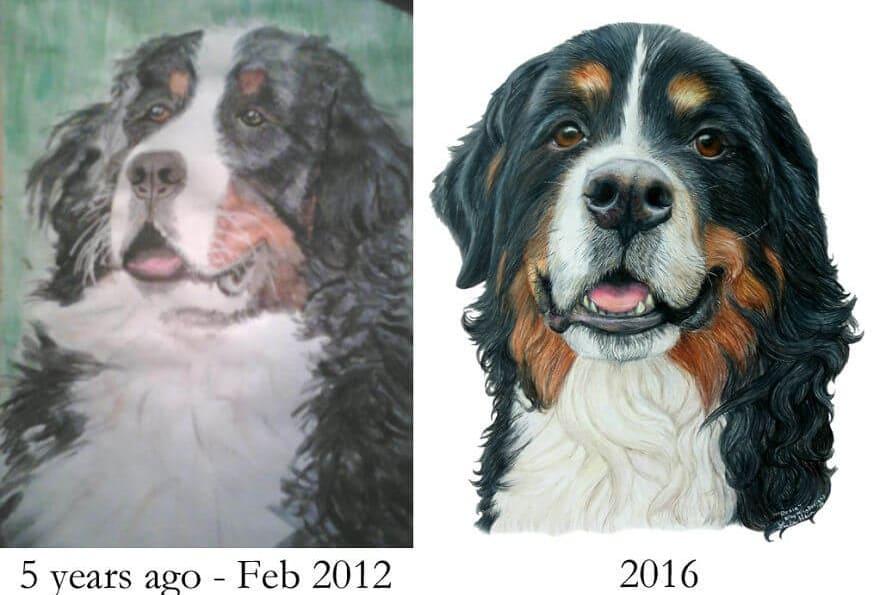 2008 и 2011