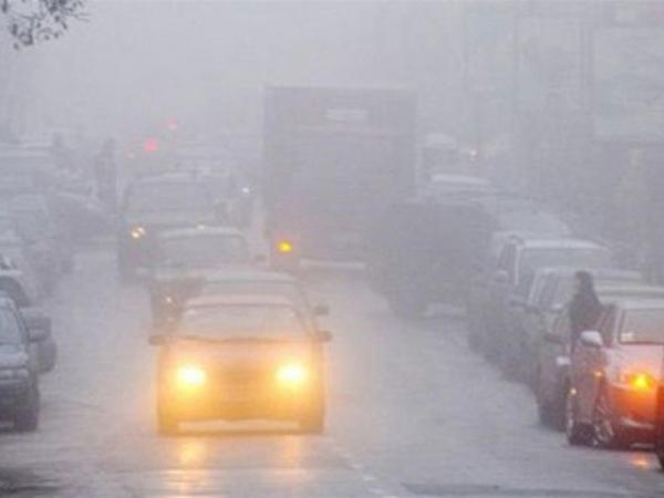 Ночью в Курской области прогнозируют туман