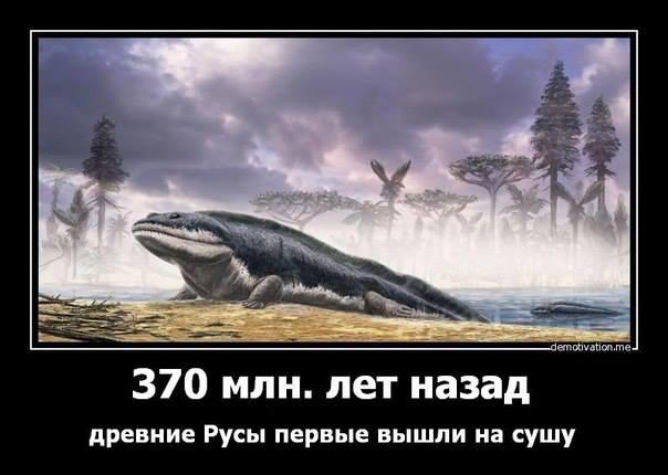 СУША русы .jpg