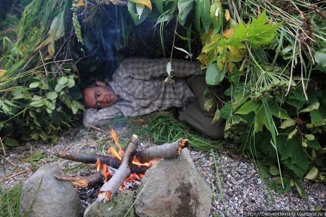 Как выжить человеку в лесу