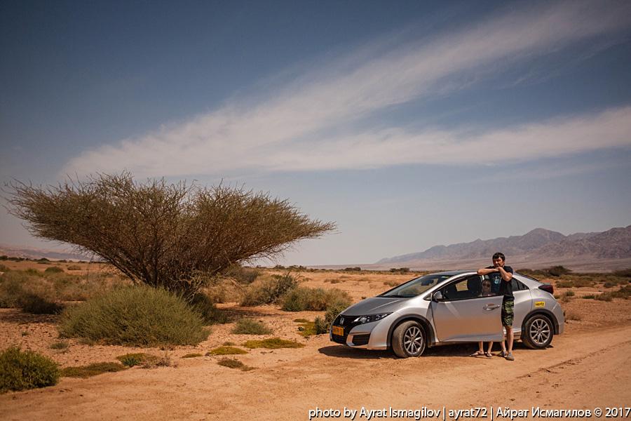 Фотозарисовка из пустыни