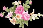 Beautiful Roses #7 (27).png