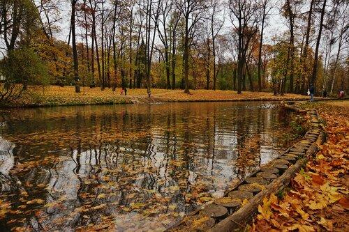В парке лесотехнической академии Петербурга