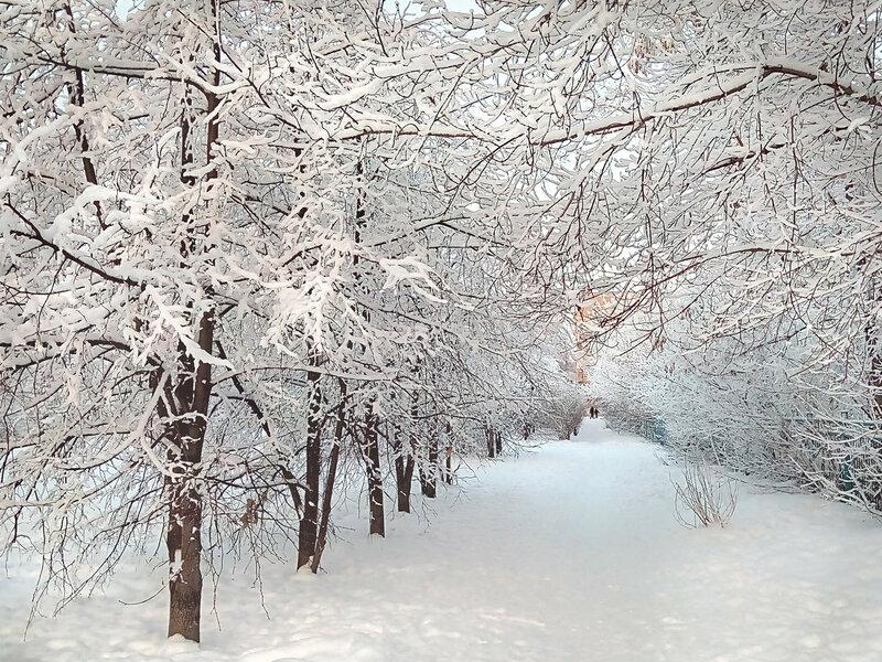 снег1 (5).jpg