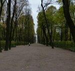 Осень Летний сад P1150811