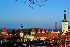 Таллин. Вышгород. Ноябрь